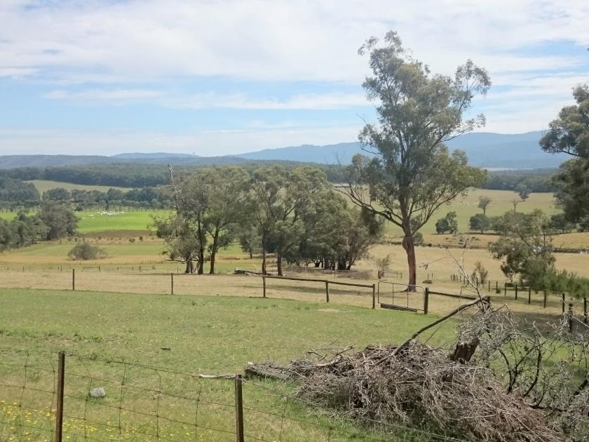 Melbourne-Farm-AuPair-Australien