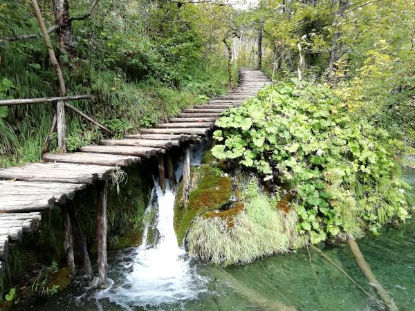 Steg Plitvitzer Seen Kroatien