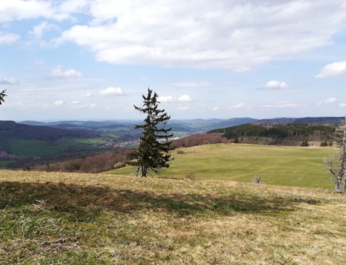 Meine liebsten Reiseblogs für Deutschland und Europa