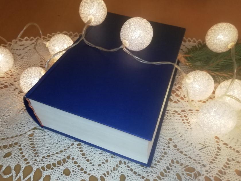 Buch-Deko-Lichterkette