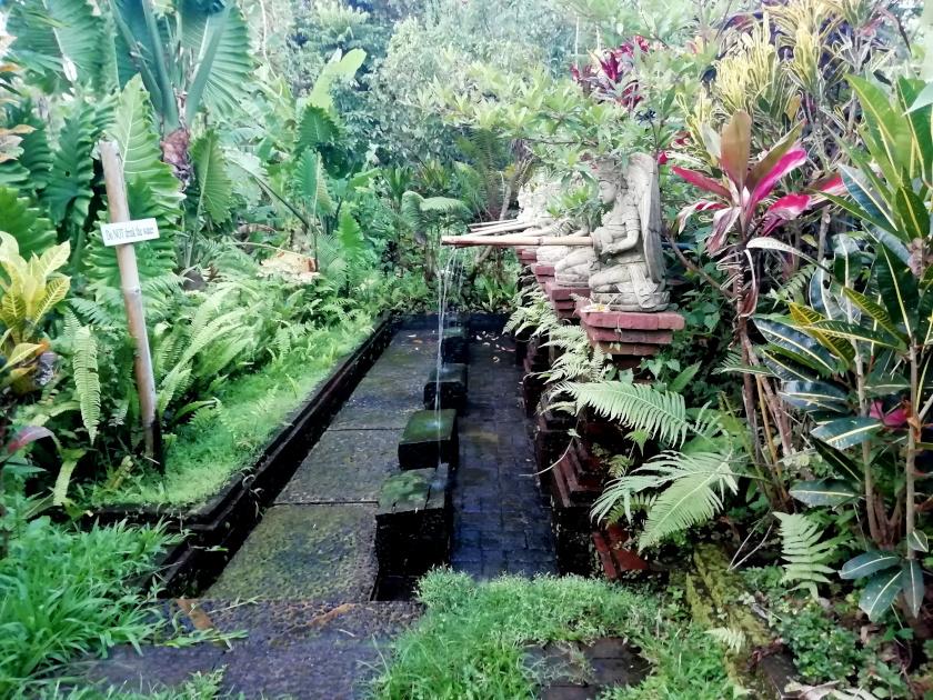 Bali-Silent-Retreat-Wassermeditation