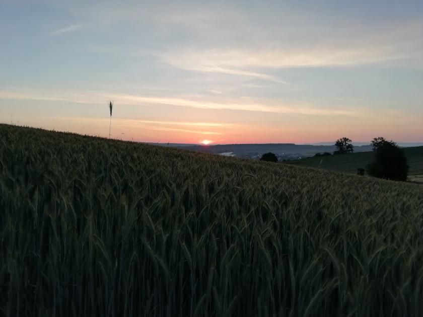 Alltag-Aufregender-Sonnenaufgang