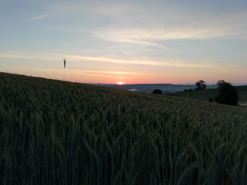 Morgenroutine-Sonnenaufgang